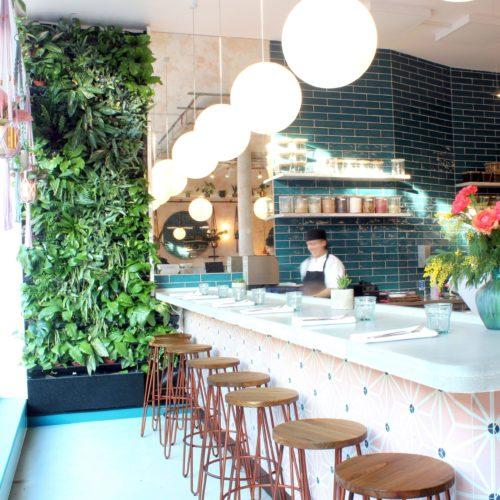 wild food cafe 2