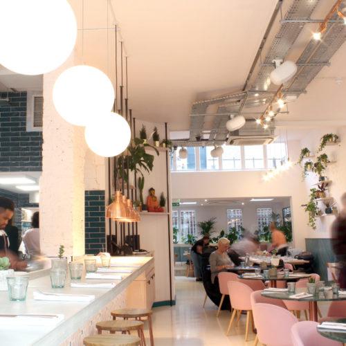 wild food cafe 5